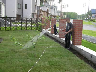 Укладка рулонных газонов в Днепропетровске
